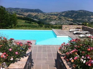 The pool, with roses in the foreground and the mountains in the background.